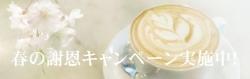 Haru_top_word
